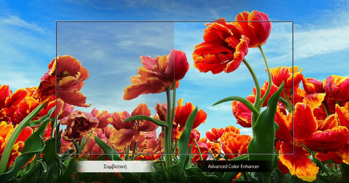 Dynamic Color Enhancer